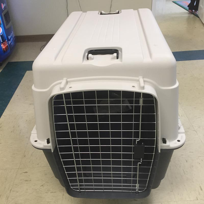Kennels, Crates, Beds, Bowls, and Places